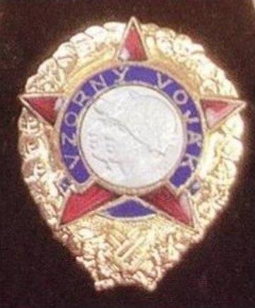 Čestný odznak Vzorný voják